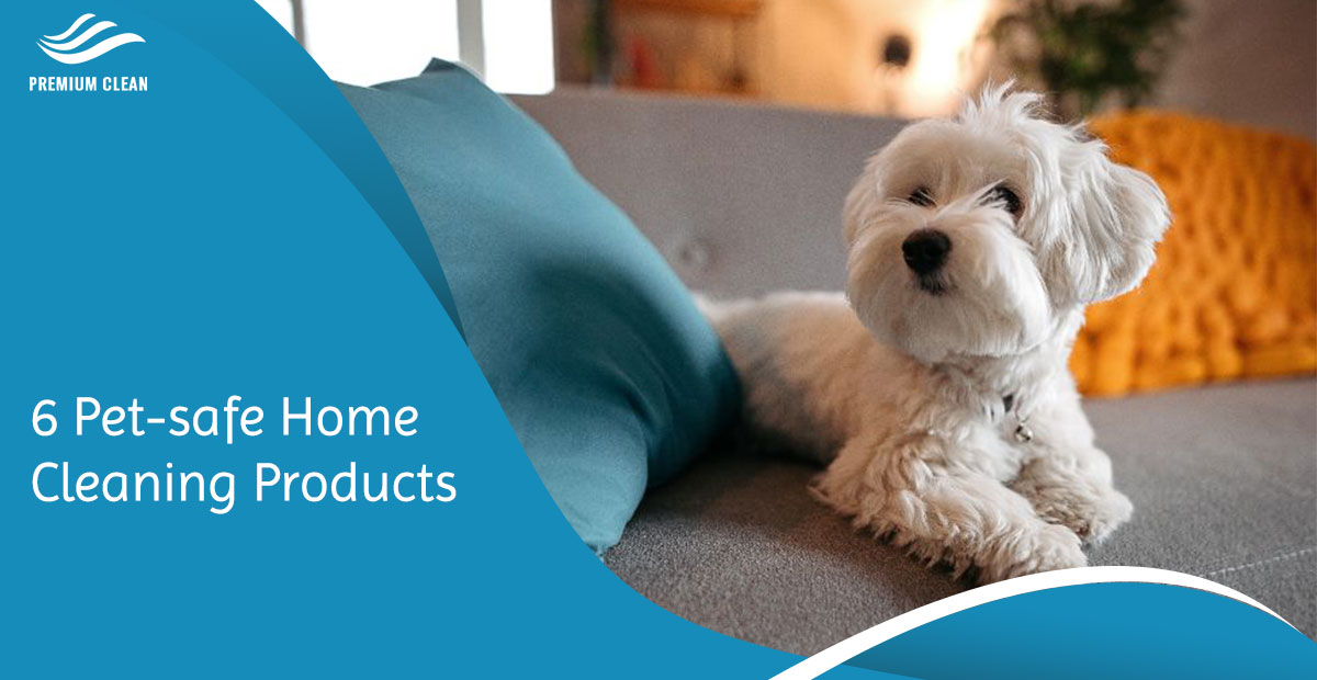 6 Pet-safe Home Cleaning Products