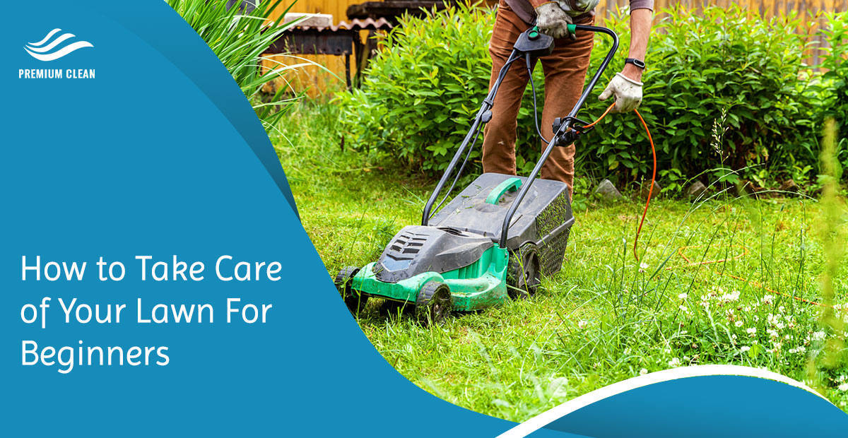 How to Take Care of Your Lawn For Beginners