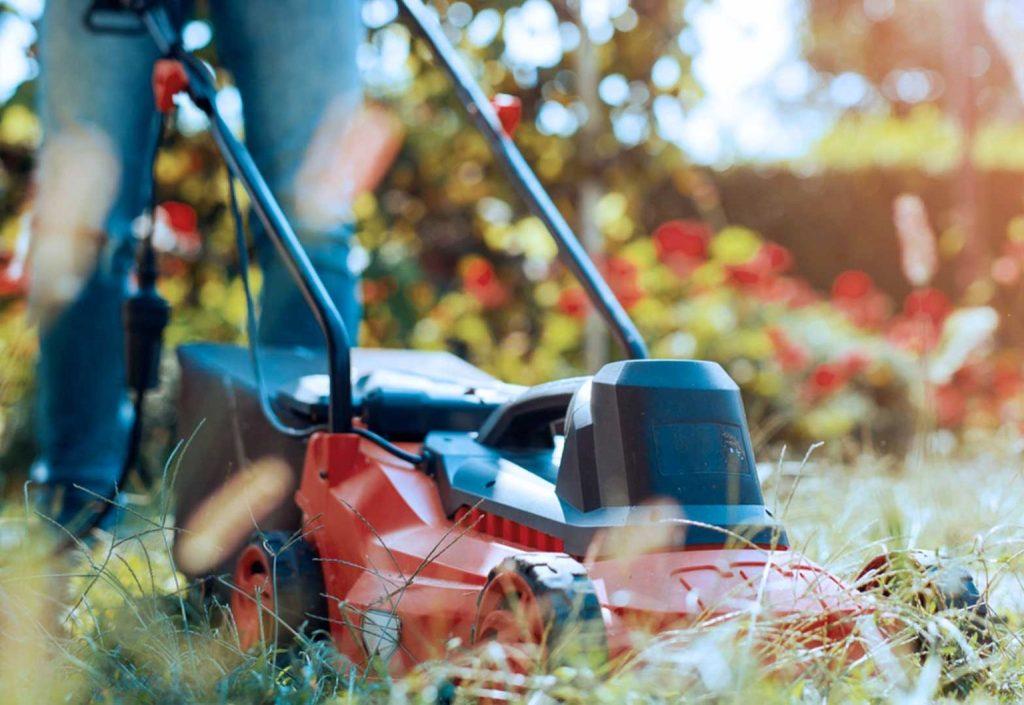 Lawn & Garden Clean-Up