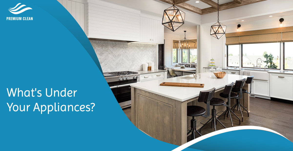 What's Under Your Appliances?