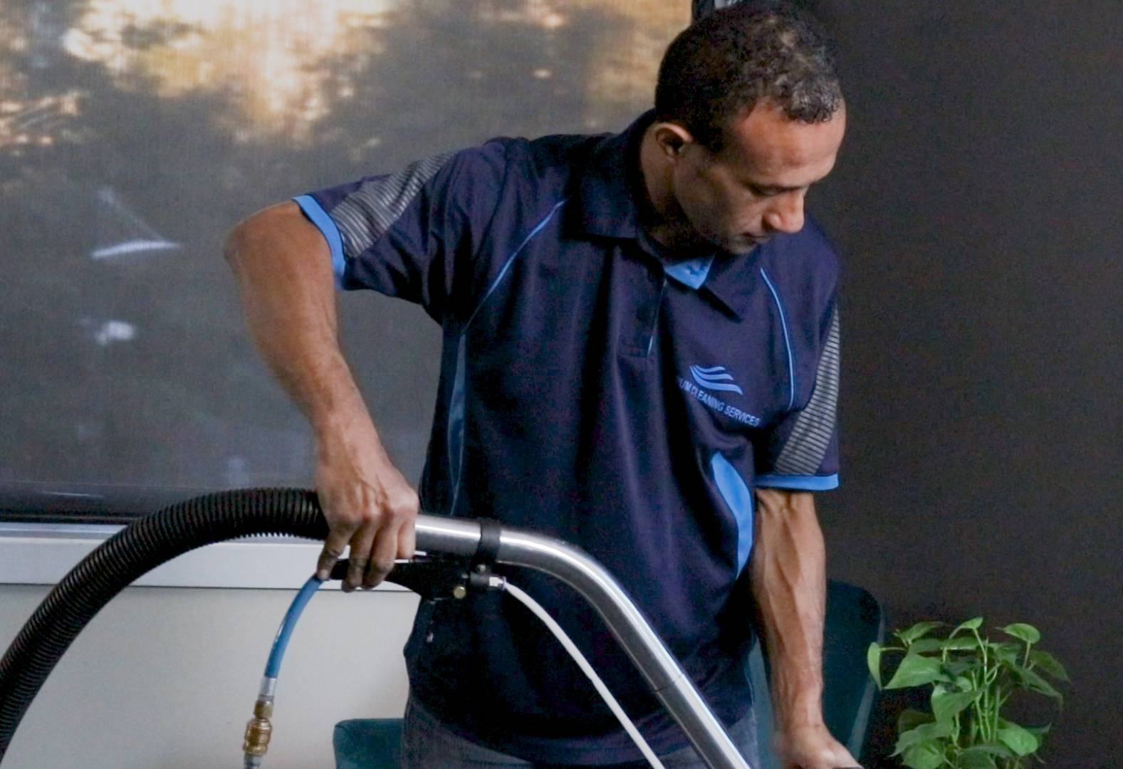 Auckland Carpet Cleaning Services