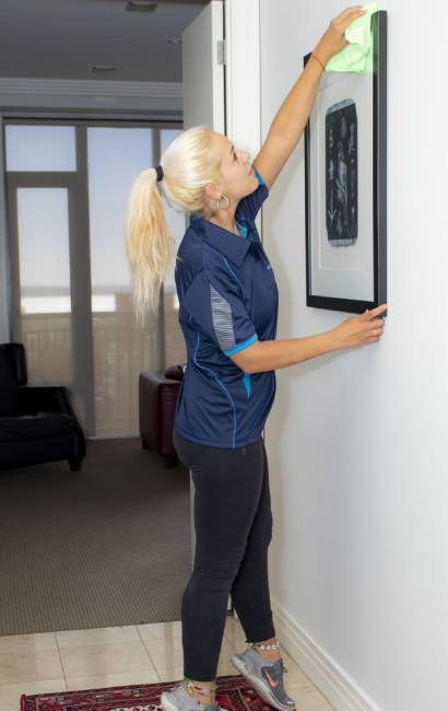 Auckland cleaning services