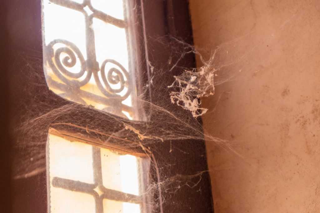 Cobwebs Cleaning Tips