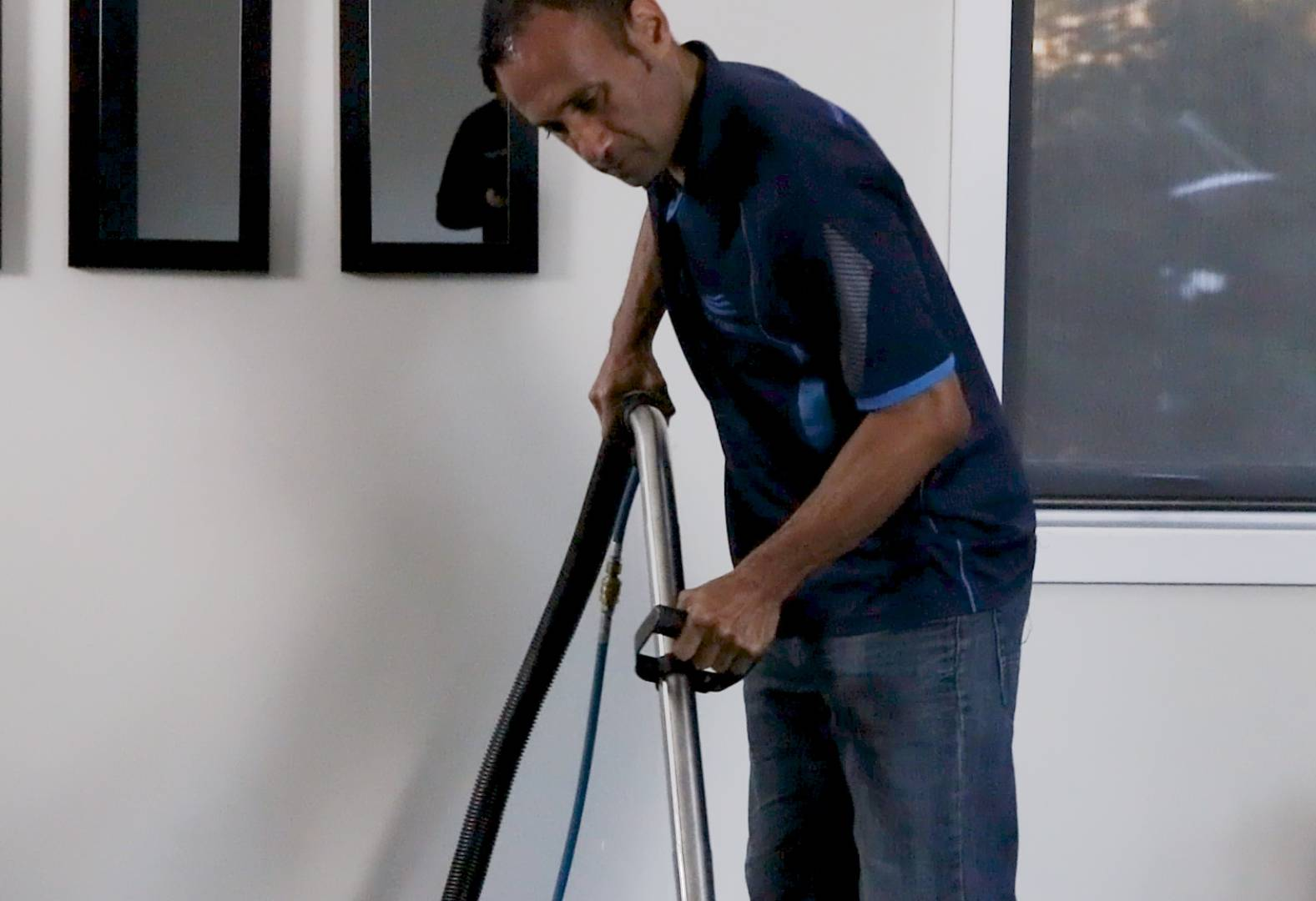Napier Carpet Cleaning Services