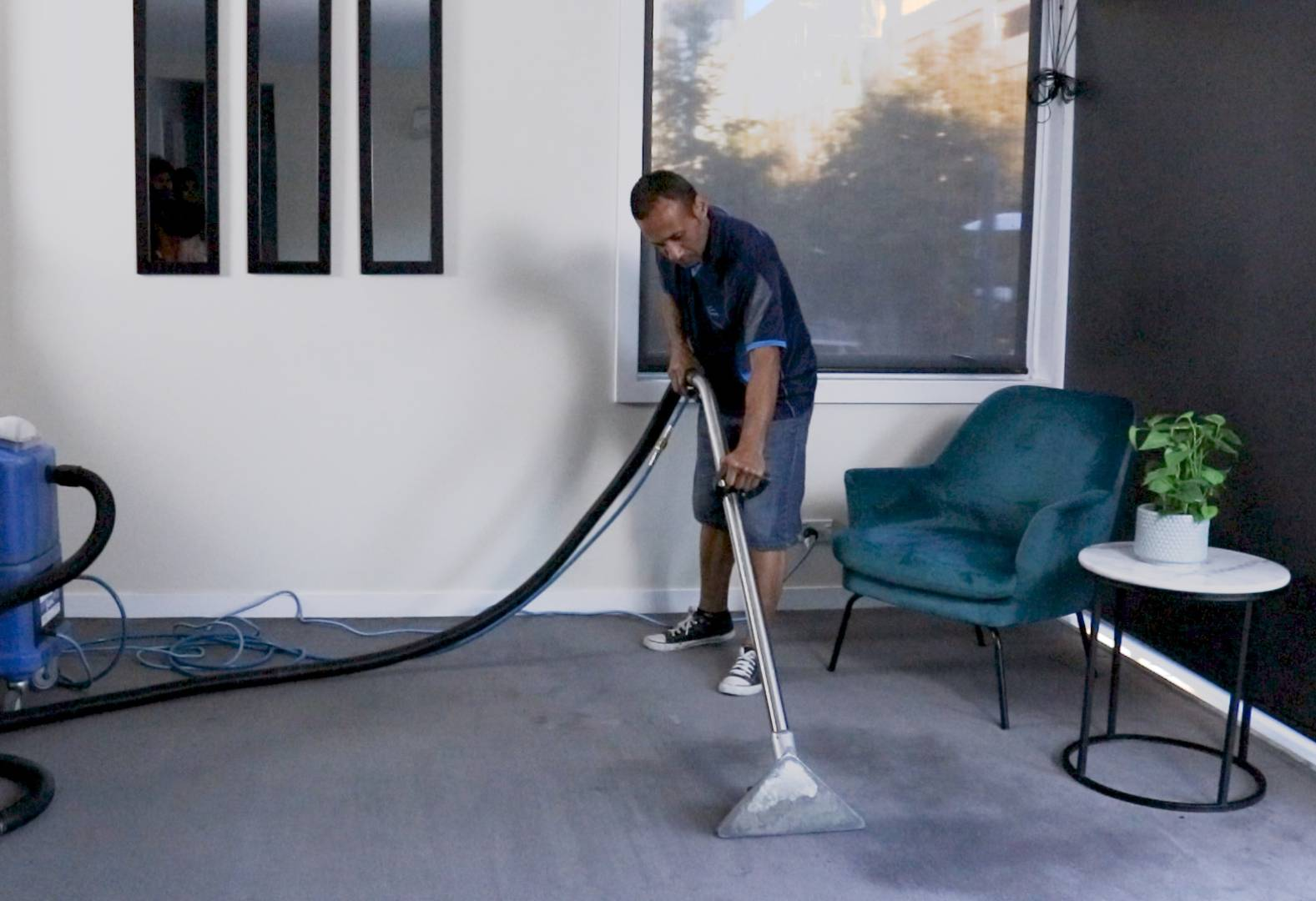 Nelson Carpet Cleaning Services