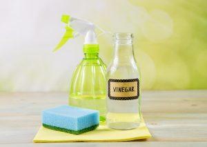Vinegar Spray for Cleaning